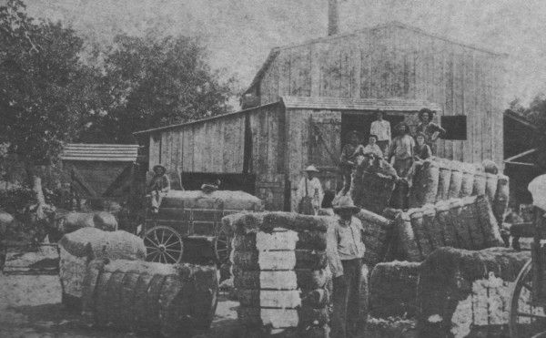 Bushdale Cotton Gin Milam County Texas Date Unknown Cotton Gin Photo Milam