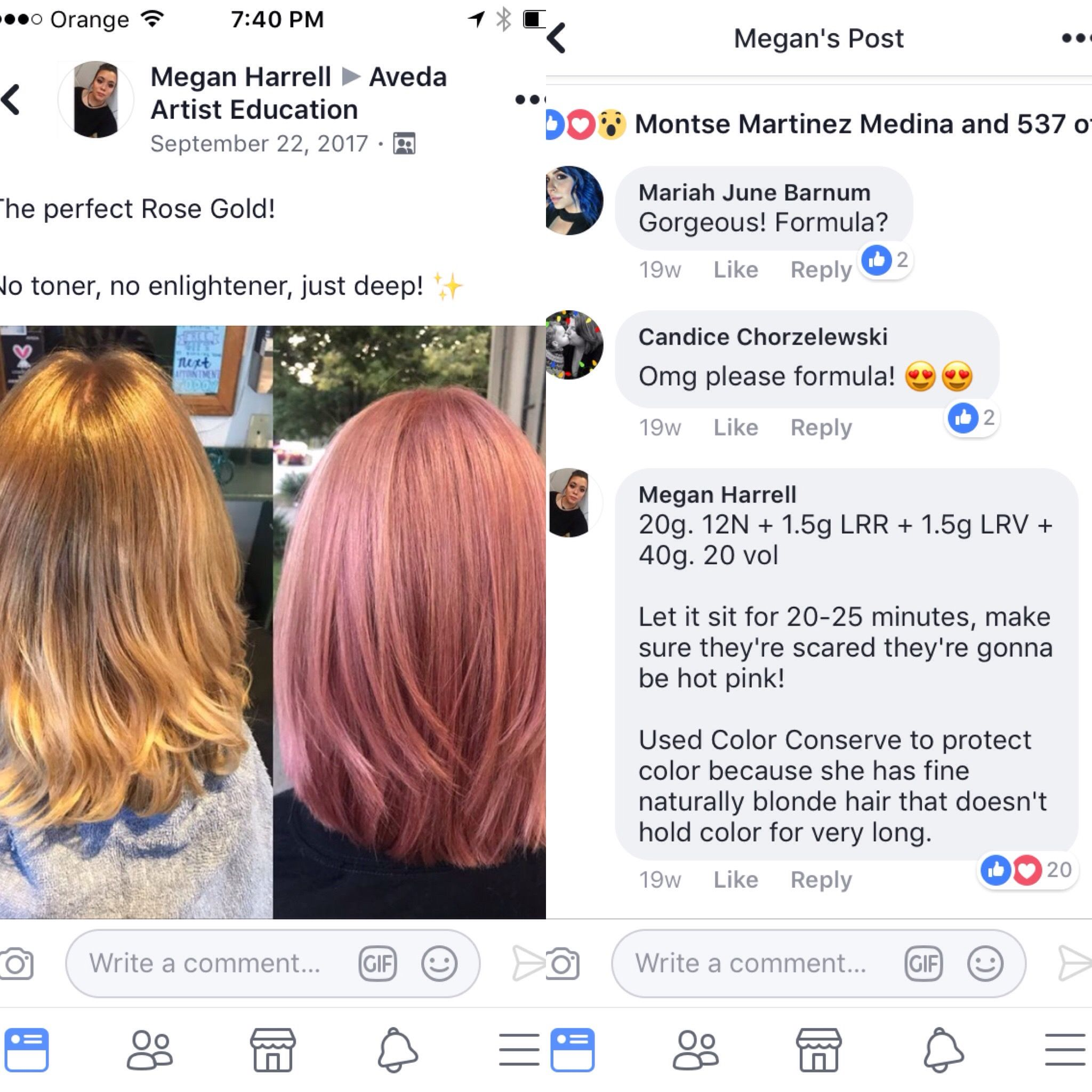 Pin By D D On Aveda Creative Formulas Rose Hair Color Formula Aveda Hair Color Beauty Hair Color