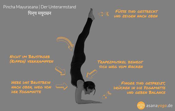 Unterarmstand (Pincha Mayurasana) gibt DIR Energie | Yoga, Muladhara ...