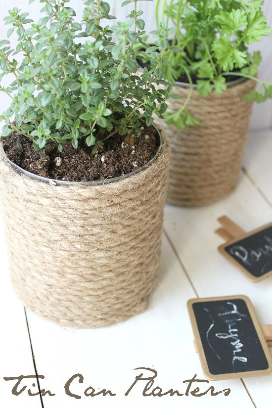 14 Tin Can Herb Garden Ideas #tincans