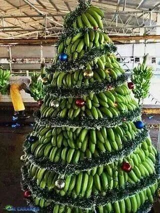 Plantains Used As A Decor For A Christmas Tree Caribbean Christmas Creative Christmas Christmas Time