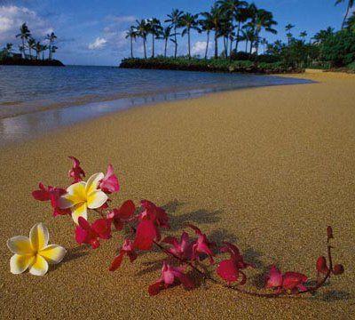 Hawaii- um destino de sonho!!