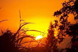 """Résultat de recherche d'images pour """"peindre un coucher de soleil acrylique"""""""