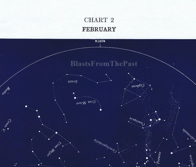 February S Vintage Constellation Lithograph Astrology Stars