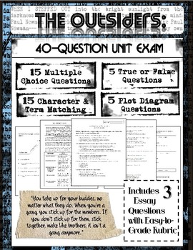 The Outsiders Novel Study: Final Test 40-Questions (Plus Bonus Essay ...