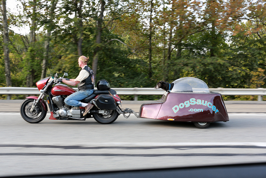 The Dog Saucer Png 868 215 581 Pixels Motorcycle Trailers