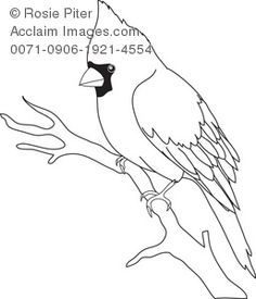 Acclaim Images Bird Outline Photos Stock Photos Images