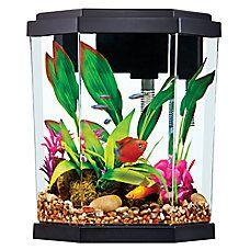 Top Fin 2 Gallon Intrigue Aquarium Kit Aquarium Kit Aquarium Pet Spray