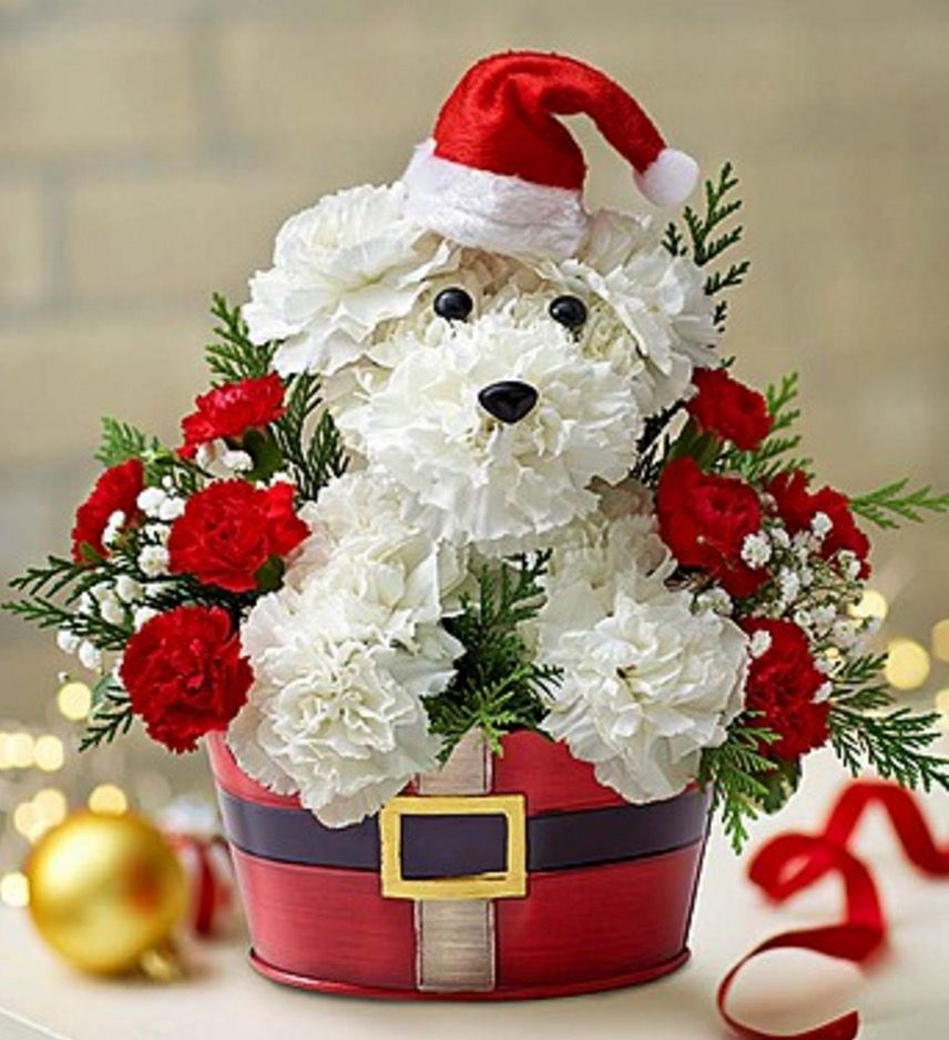 Puppy bouquet instructions watch the video tutorial pinterest diy puppy bouquets the whoot more izmirmasajfo