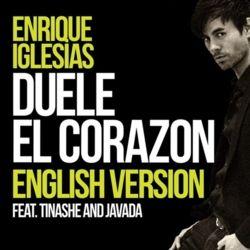 Enrique Iglesias Colour Door Poster New