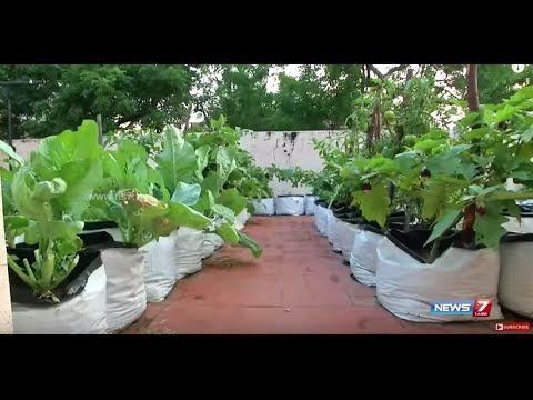Learn About Tn Govt Subsidy For Setting Up Terrace Gardens Poovali News7 Tamil Youtube Terrace Garden Dream Garden Terrace