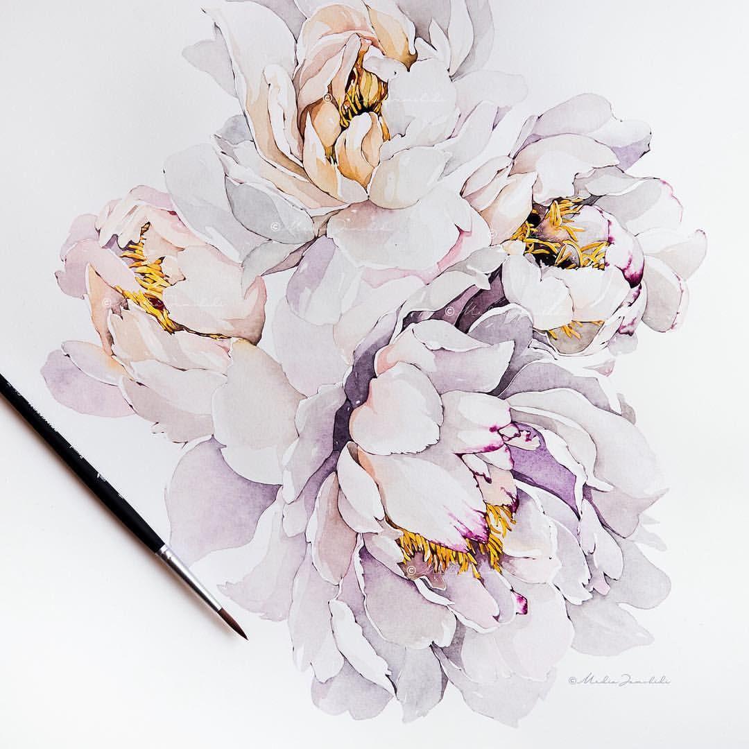"Surface Pattern Designer 在 Instagram 上发布:""Peonies media"