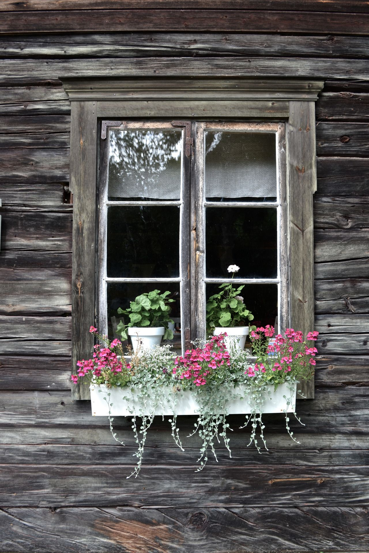 Far Away From Home Photo Garden Pinterest Window Doors And