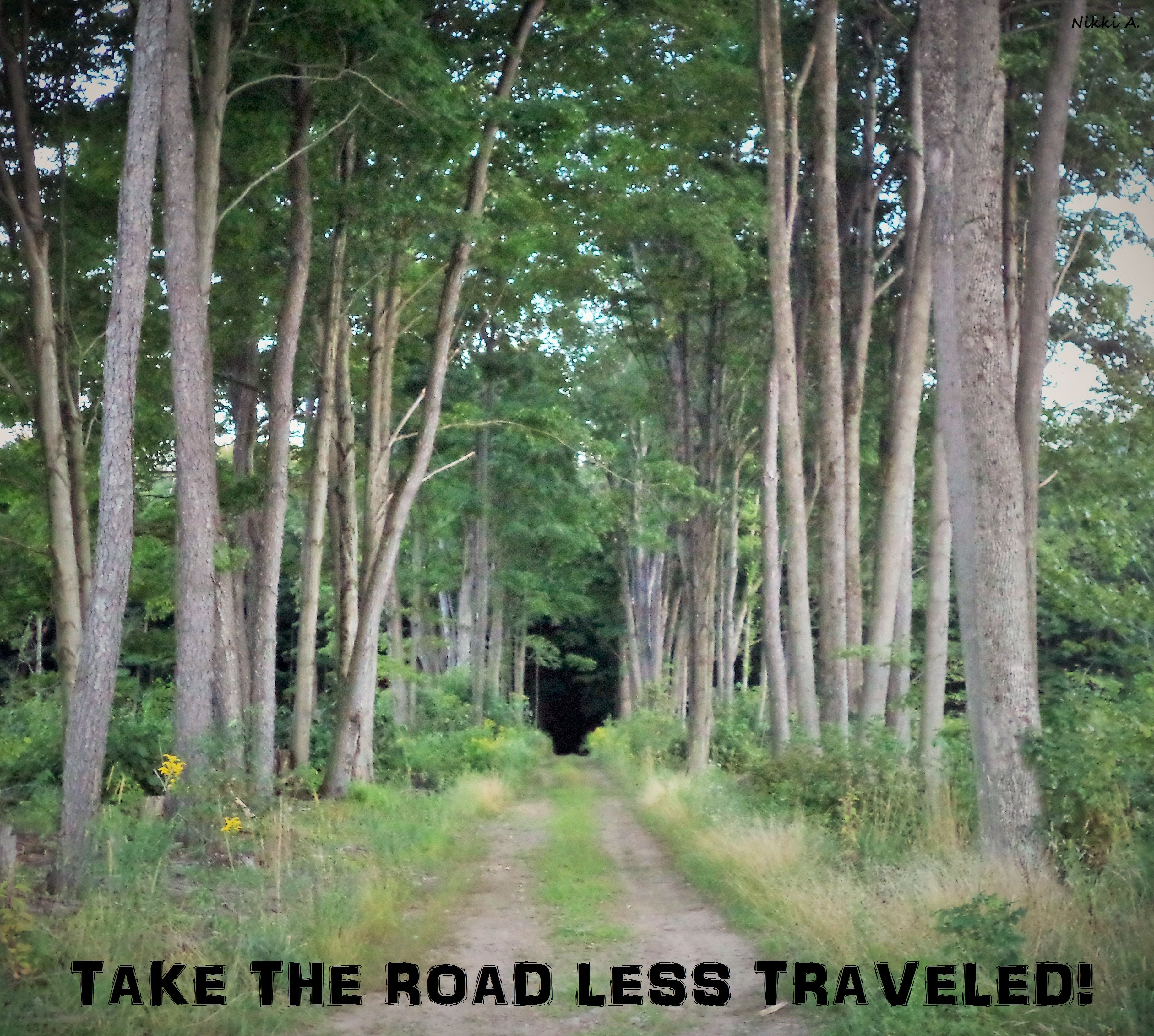 Take The Road Less Traveled Country Quotes And Sayings This Road