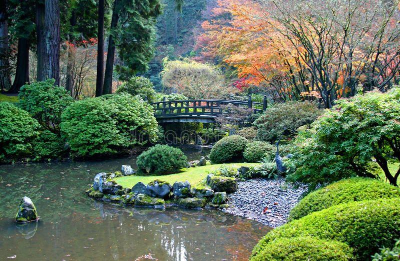 Japanese Garden. Spectacular view of the Japanese Garden