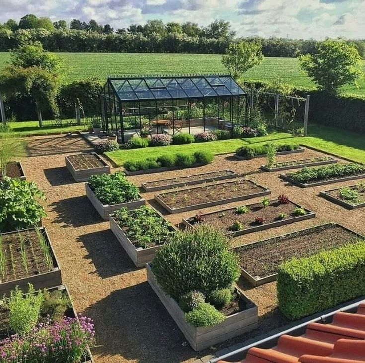 4X8 Raised Bed Vegetable Garden Layout Garden layout