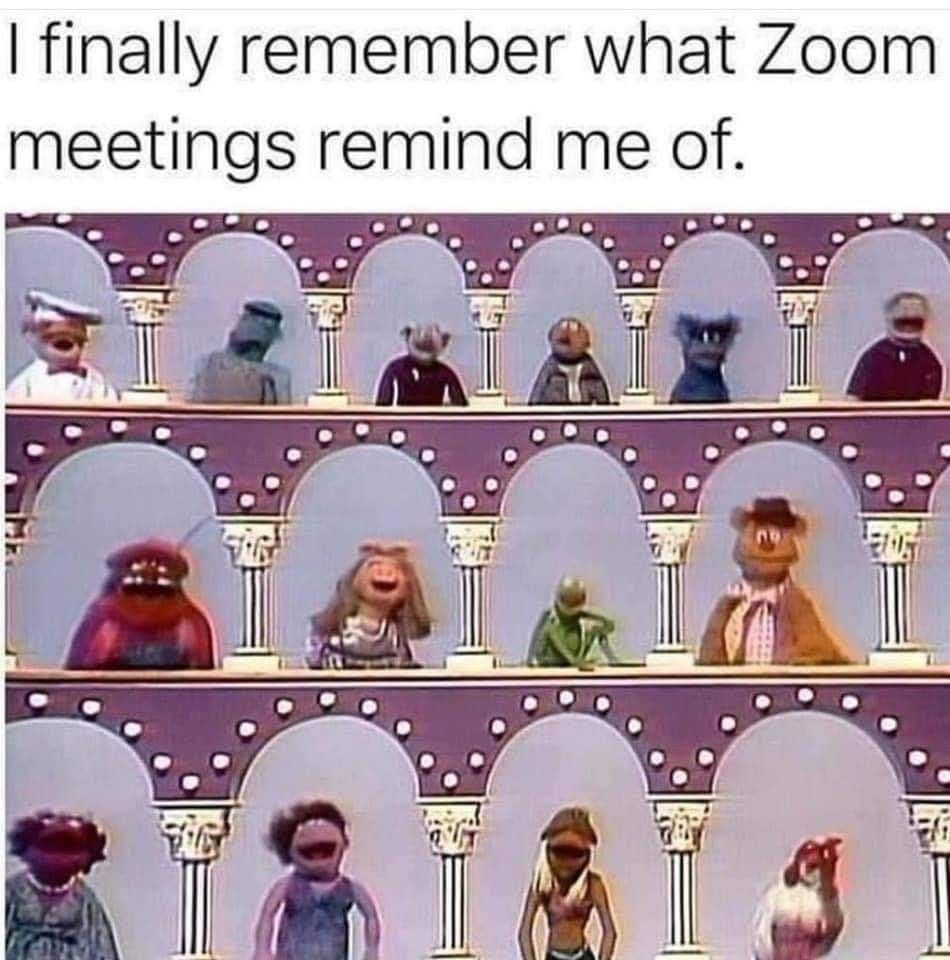 Zoom Meetings The Muppet Show Really Funny Memes Funny Relatable Memes Haha Funny
