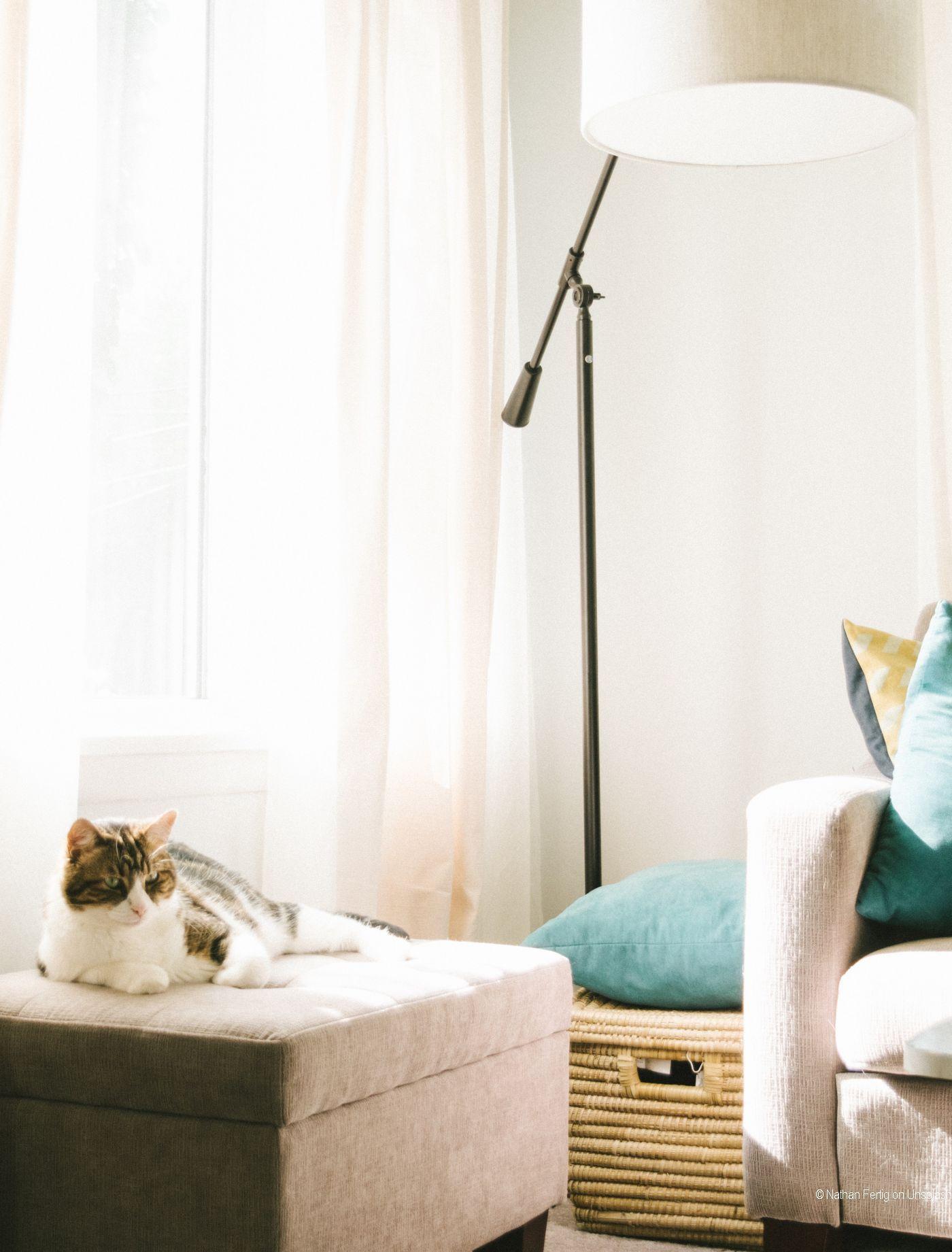 Entspannter Wohnen Nutze die Wirkung von Farben (mit