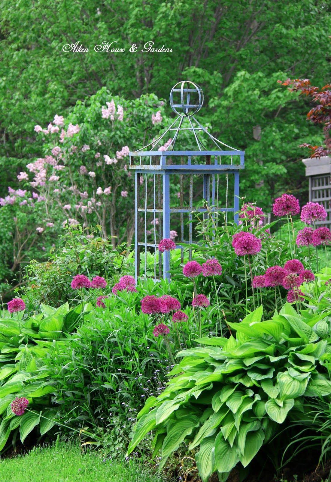 House garden landscape  Aiken House u Gardens  Knockout landscape  Pinterest  Gardens