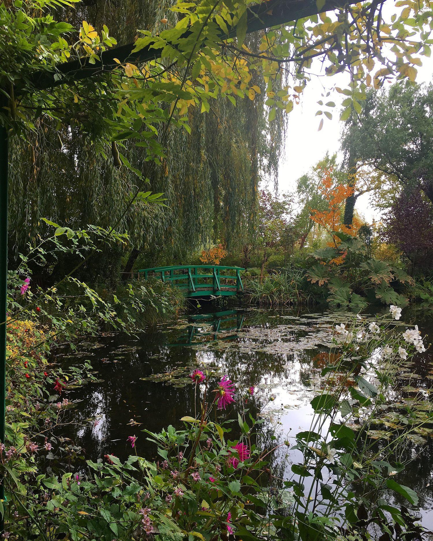 Monet's Lilly Pond