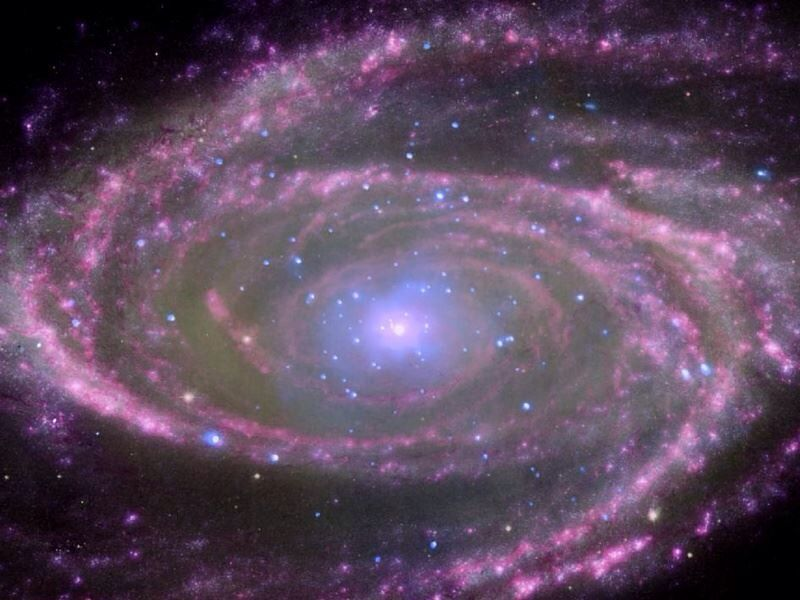 Spiral galaxy M81 as seen though a combination of x-ray optical , ultraviolet and infrared imaging techniques