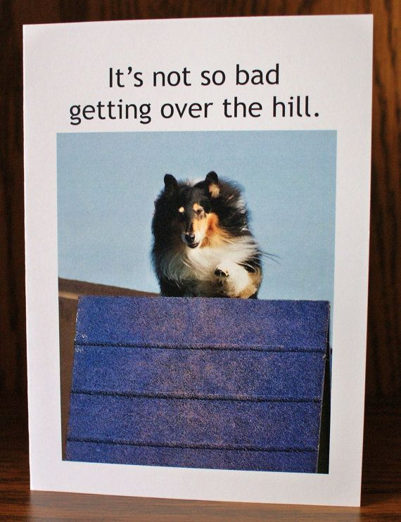 Dog Agility Birthday Card Over the Hill by Sophiagoestothedogs, $3.15