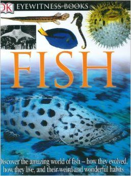DK Eyewitness Books: Fish: Steve Parker: 9780756610739: Amazon.com: Books