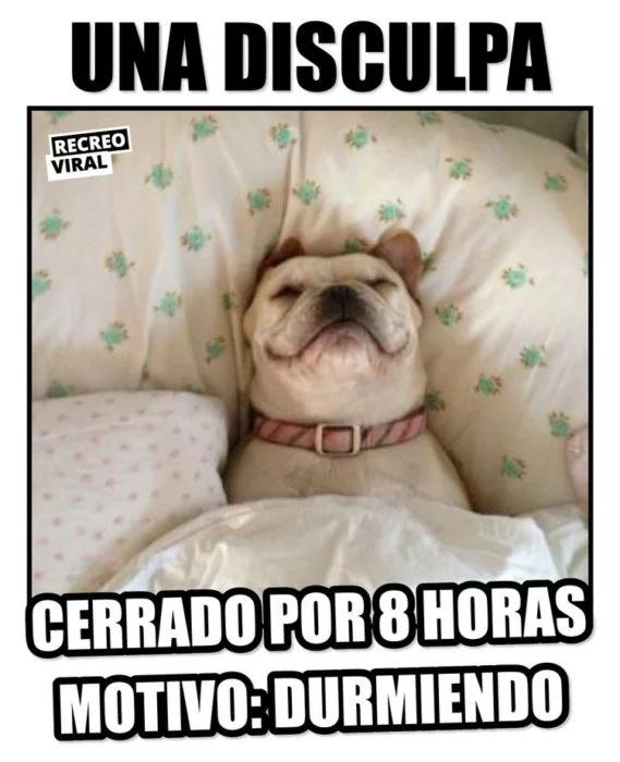 17 Memes Que Son Mejor Que Un Simple Buenas Noches Postales De Buenas Noches Buenas Noches Amiga Frases Buenas Noches