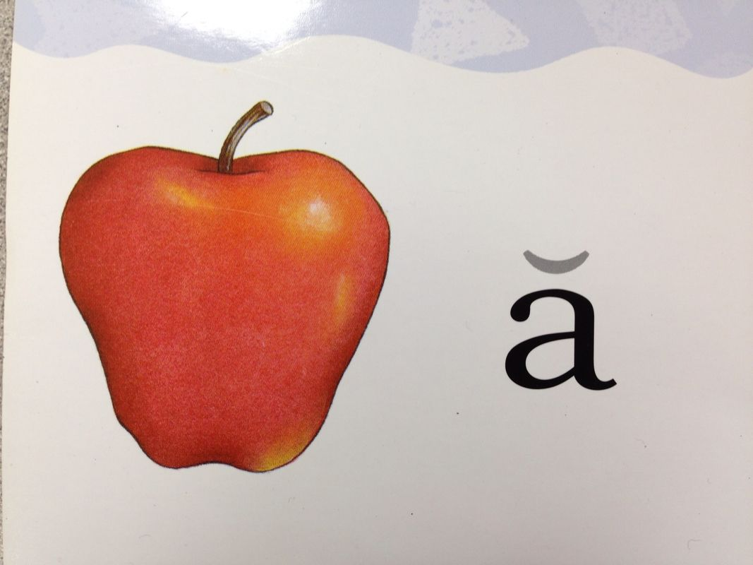 Teach Child How To Read Saxon Phonics Picture Cards