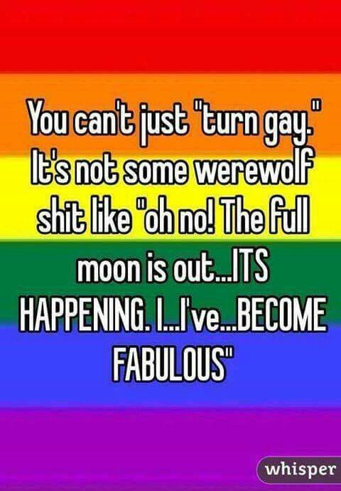funny gay quotes