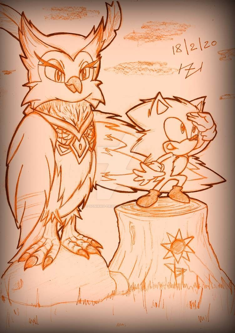 Sonic And Longclaw 2020 Sonic Movie By Sonikku Erizo On Deviantart En 2020 Erizos