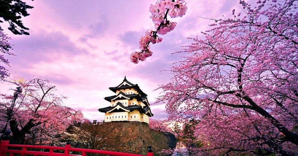 Pemandangan Alam Terindah Di Jepang Pemandangan Jepang Wisata Jepang