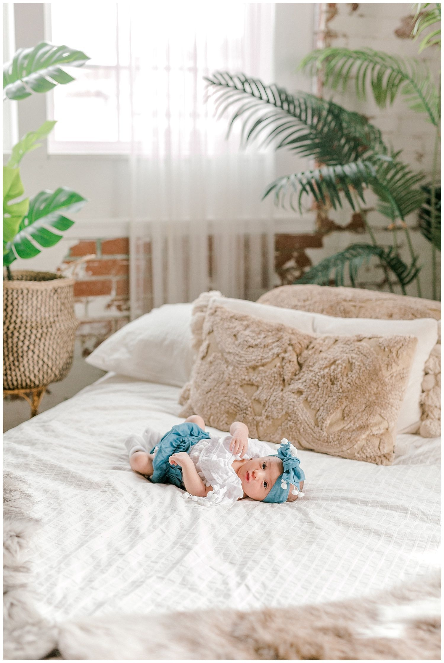 Willa Rian | A Studio Newborn Session - lytlephoto