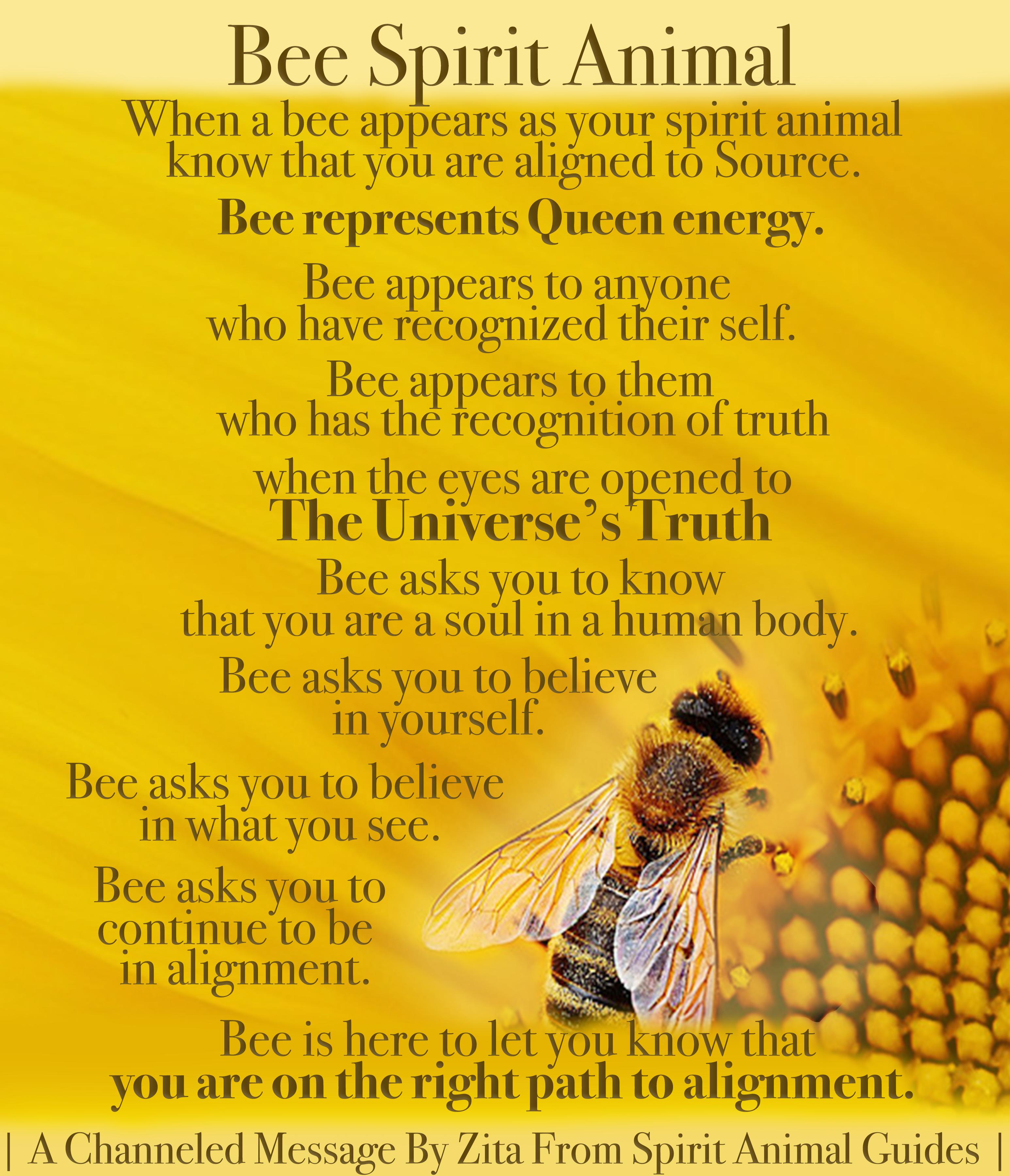 Pin On Spirit Animal Meaning