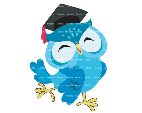 Buho De Graduacion Para Preescolar