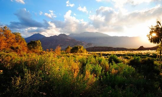 Argentina S Wine Country With Images Argentina Tourism South