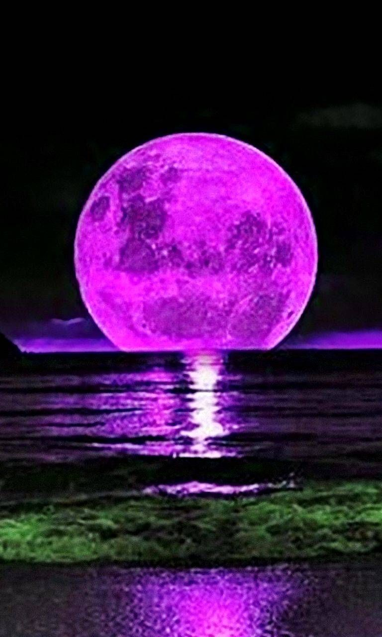 Download Pink Moon Wallpaper By Timothyczech 04 Free On Zedge Now Browse Millions Of Popular Moon Wallpapers Pink Moon Wallpaper Beautiful Moon Moon Art