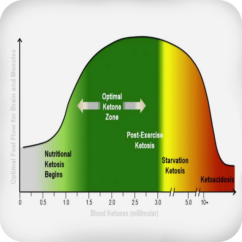 Nutritional ketosis. Dr Stephen Phinney