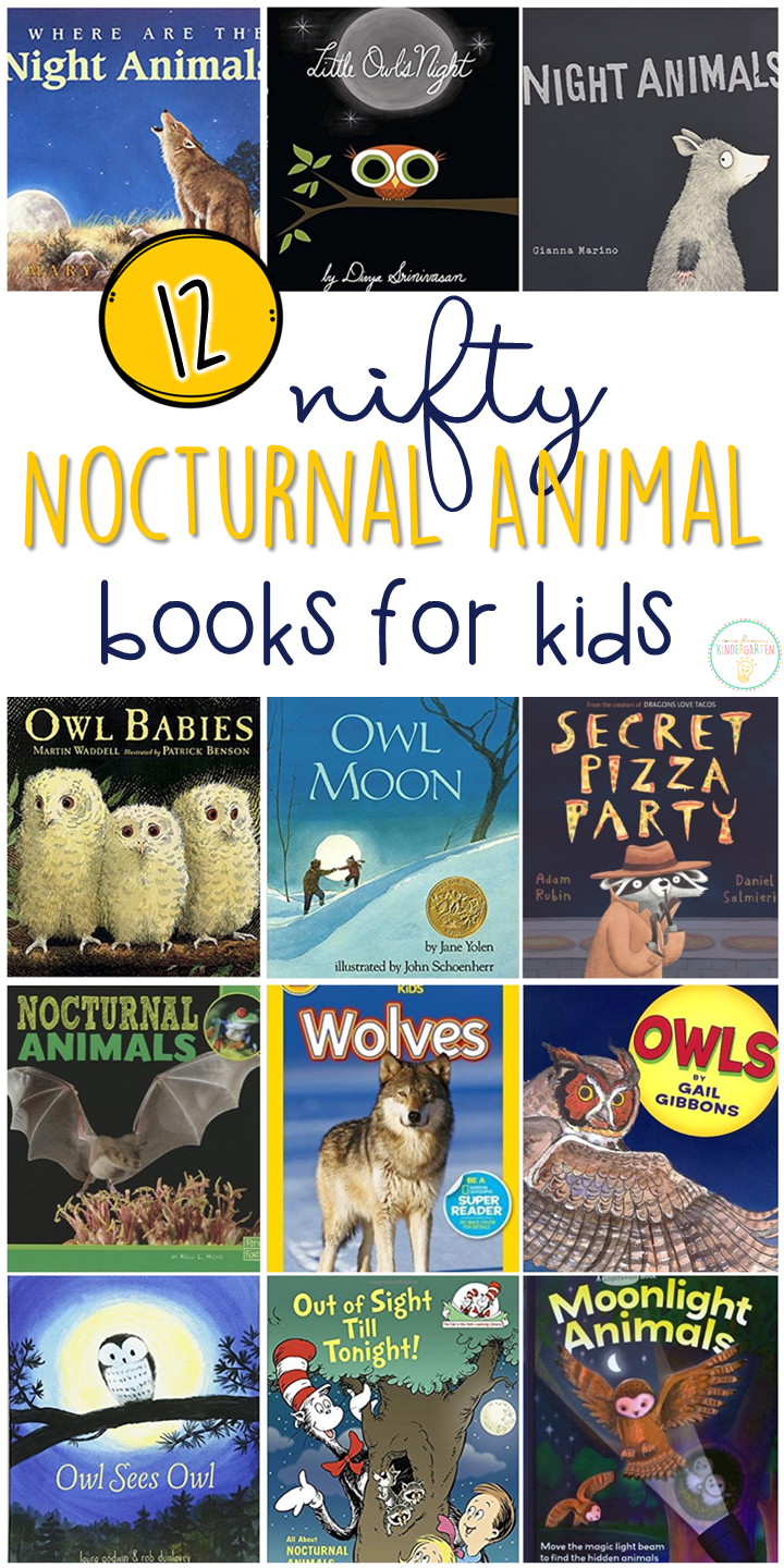 12 Nocturnal Animal Books for Kids {with teaching ideas
