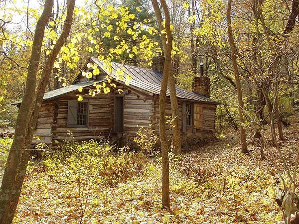 Corbin Cabin Hike Old Cabins Cabin Forest Cabin