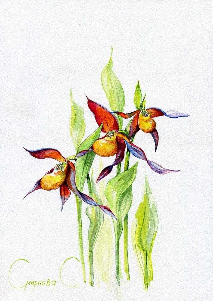 Iris, Irises, Flowers, Watercolor Original Painting from the Artist #Realism