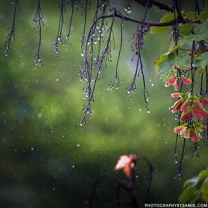 Pin by Jill on Red Rain Boots | Girl in rain, Rain