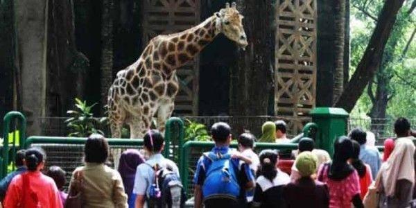 Wisata Dekat Kebun Binatang Bandung
