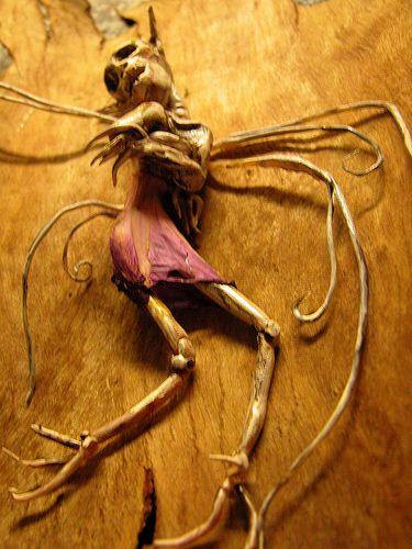 Dead Fairy Scary Tales Creepy Scary