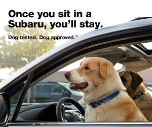 Pin En Subaru Confidence In Motion