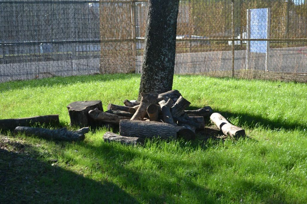 How to Make a Natural Playground in Your Own Backyard | Dallas Moms Blog