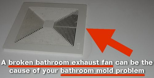 How To Fix And Prevent A Mold Problem In The Bathroom Bathroom Exhaust Fan Bathroom Exhaust Mold In Bathroom
