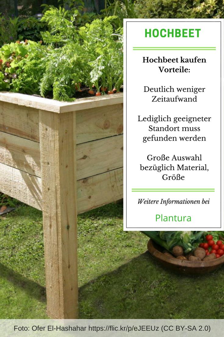 Hochbeet Selber Bauen Vs Hochbeet Kaufen Gardening Pinterest