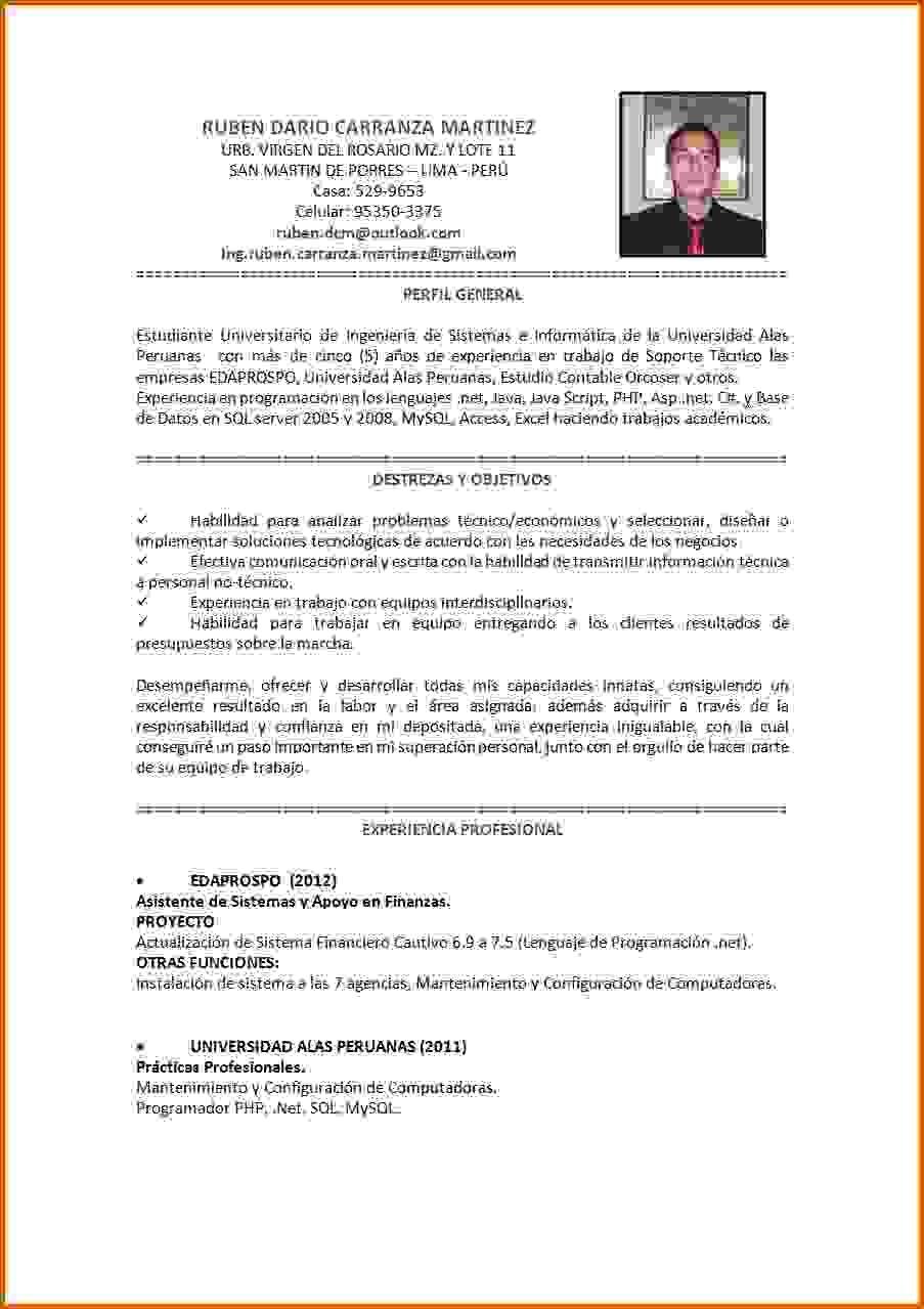 Único Reanudar Habilidades Informáticas De Muestra Bosquejo ...