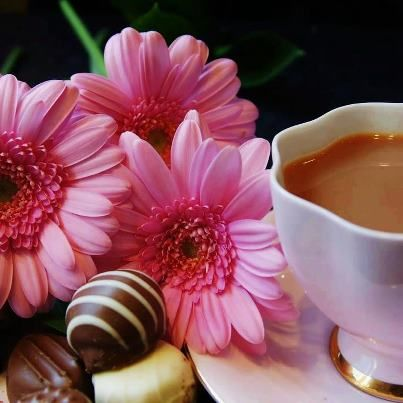 coffee, flowers and chocolate, GOOD MORNING SUNSHINE!